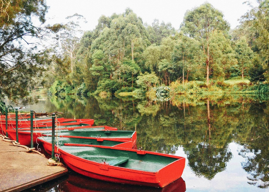 Proposal locations in Sydney Lane Cove National Park
