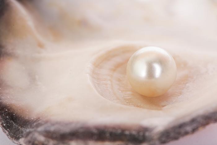 Pearl jewellery south sea pearl shell